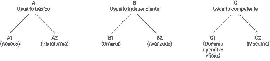esquema_formacion_linguistica_integrada